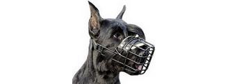 Boutique muselière pour chiens